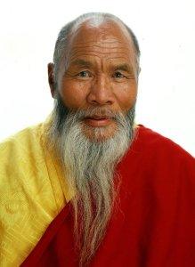Penam Rinpoche x