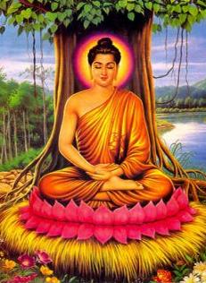 buddha_bodhibaum